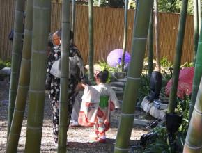 竹取物語をモチーフにした着物ショー